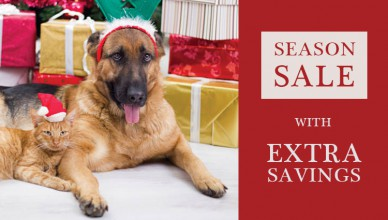 Pet Safe And Healthy During Holidays Season