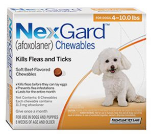Nexgard Oral Flea Treatment