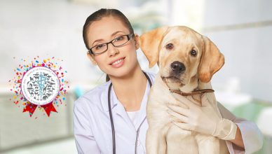 World VeterinaryDay Celebration