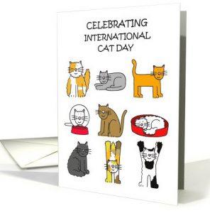 celebrating international cat day