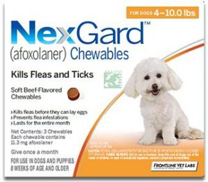 Nexgard chewables for dog