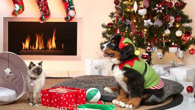 pets products christmas sale.