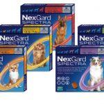 Nexgard Spectra all packs