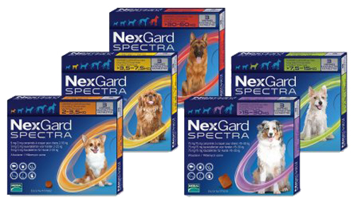 nexgard-spectra-all-pack