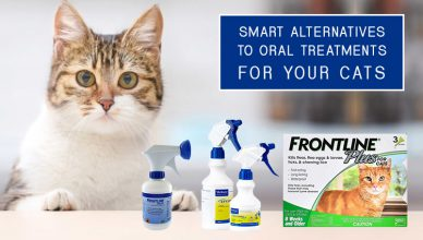 Alternatives to Oral flea Treatments