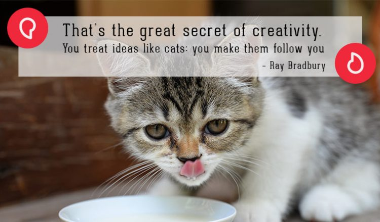 Ray Bradbury on cats