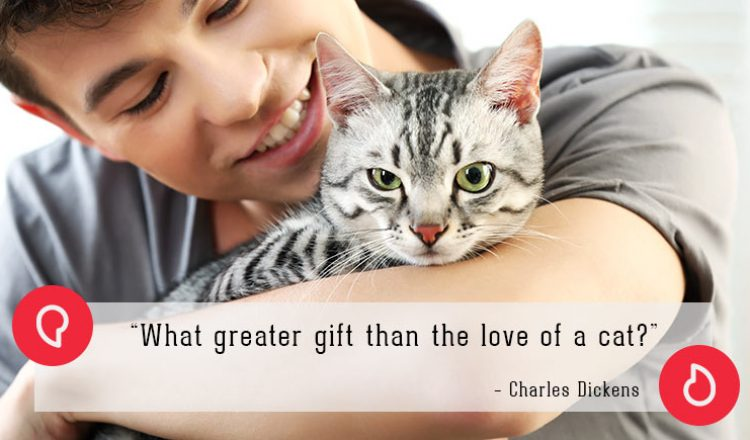 Charles Dickens on cats