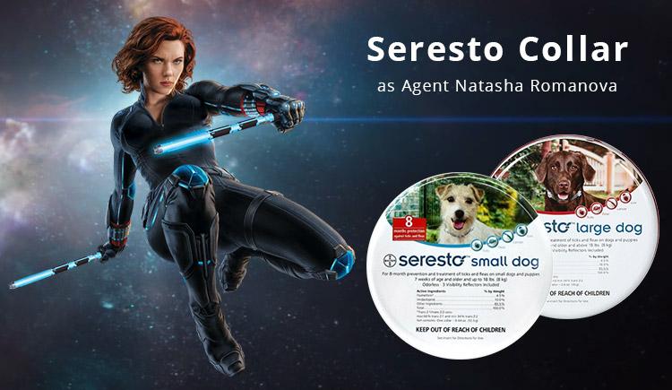 Buy Seresto The Black Widow