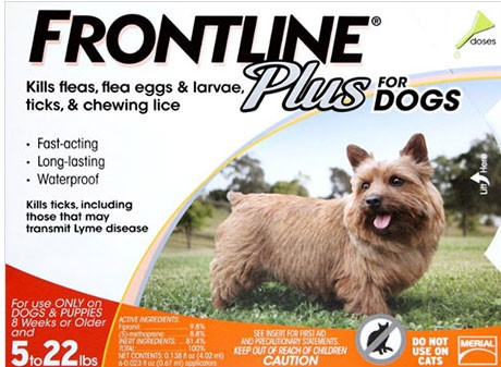 Buy Frontline Plus For Dogs
