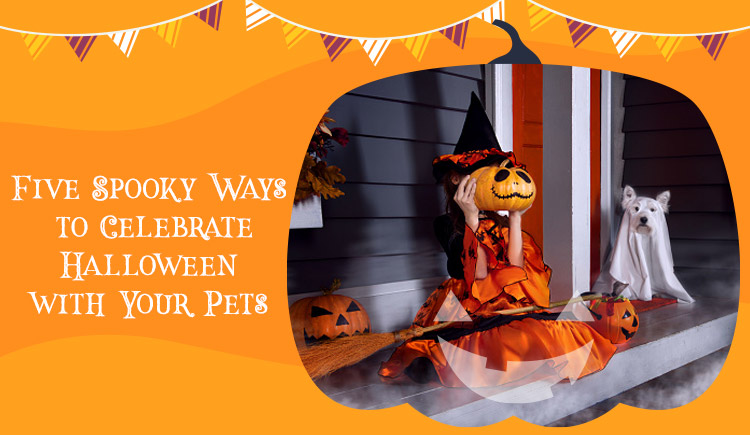 Five Spooky Ways to Celebrate Halloween with Your Pets