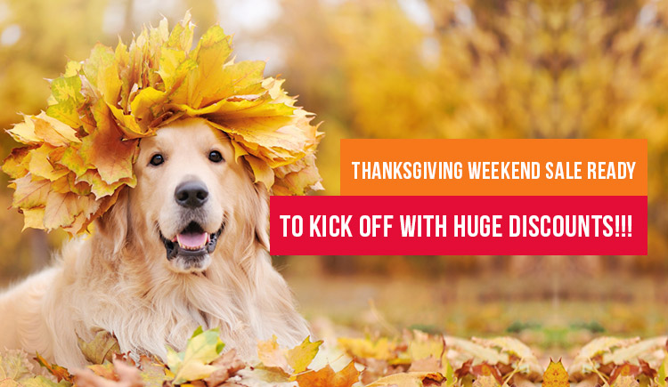 Thanksgiving Weekend Sale Ready To Kick Off with Huge Discounts!!!