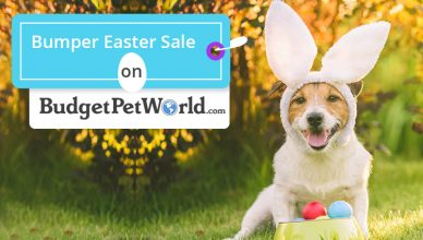 BPW-Bumper-Easter-Sale