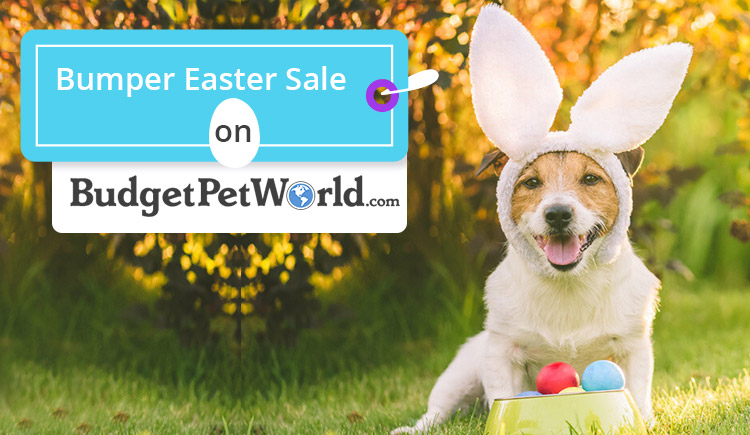 Bumper Easter Sale On BudgetPetWorld