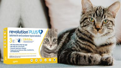 Revolution Plus = The 6 in 1 Protection Treatment For Cats