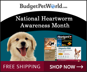 Heartworm Awareness Sale is on. Use Code:-HWAMS10  & get extra 10% discount + Free Shipping on all heartworm preventive ! Hurry Order Now