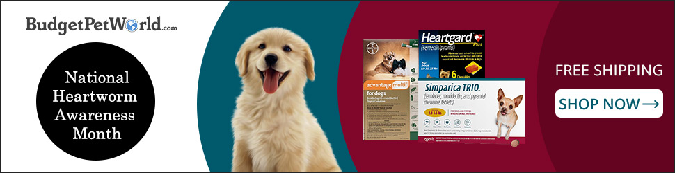 Use Code:-HWAMS10 &  Save 10% Extra off + Free Shipping on Heartgard Plus to Safeguard your Pet Heart on this Heartworm Awareness Month