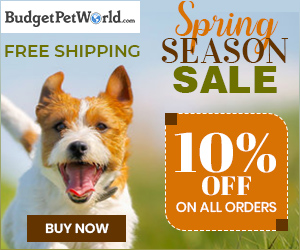 Celebrate Spring With Treat! Use Code:- SPSALE10 & Grab Extra 10% Discount + Free Shipping on all pet products