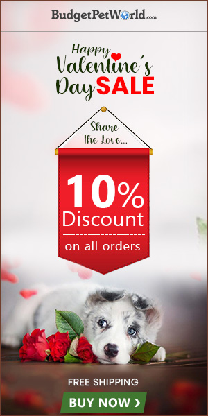 Fall In Love with your Pooch again This Valentine! Get Extra 10% Off + Free Shipping with Coupon:VLOVE10