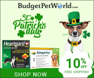 Get Lucky, Save More on this St. Patrick's Day! Avail 10% Extra OFF & Free Shipping! Use Coupon:SPTLUCK10