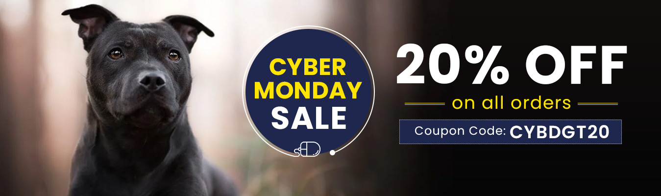 BPW-main-CyberMonday-Nov20_11292020_210736.jpg