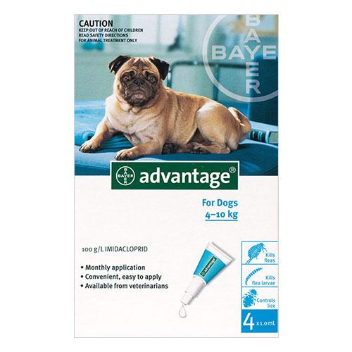 Advantage Medium Dogs 11-20lbs (Aqua) 6 + 2 Doses Free