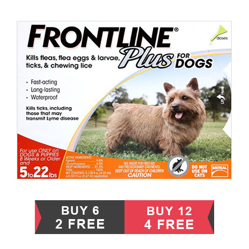 Frontline Plus for Small Dogs up to 22lbs (Orange)