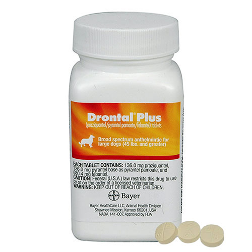 Drontal for Medium Dogs 3.1 - 10 Kg