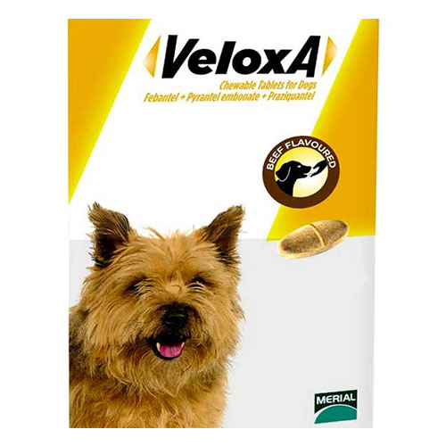Veloxa Chewable Tablets for Small & Medium Dogs 4 Tablet