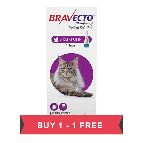 637286540432267421-Bravecto-Spot-On-Cat-Big.jpg