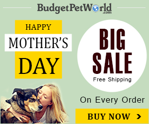 Mother's Day Special: Take 12% Extra OFF Everything + Free Shipping Worldwide. Use Coupon: MDSALE12