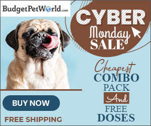 Prepare Yourself for Cyber Monday COMBO OFFERS  + Extra 12% Off & Free Shipping on All Orders! Use Code :MONDAY12